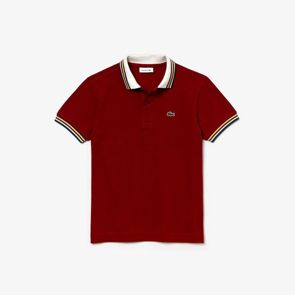 Boys Multico Regular Pique Polo