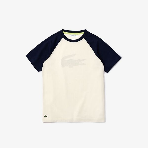 Boy's Crocodile Print Bicolour Cotton T-shirt