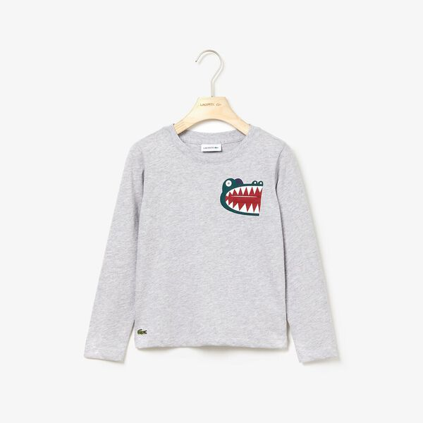 Boy's Multico Long Sleeve Tee, SILVER CHINE, hi-res