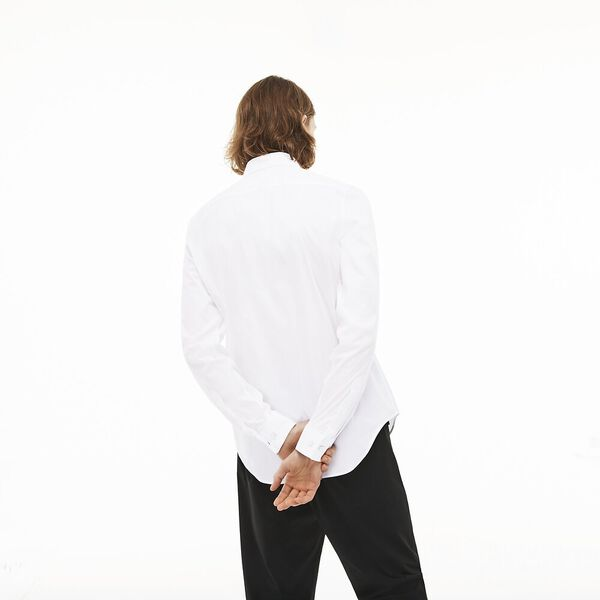 Men's Slim Stretch Solid Poplin Shirt, WHITE, hi-res