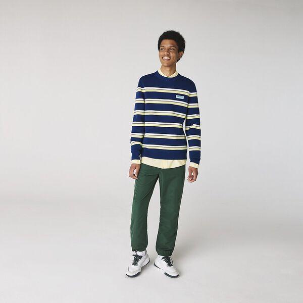 Men's LIVE Striped Cotton Crew Neck Sweater, GLOBE/MULTICO, hi-res